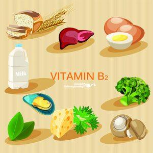Die Bedeutung der Vitamin-B-Gruppe in der pränatalen Ernährung