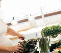 Eisenaufnahme während der Schwangerschaft und ihre Bedeutung