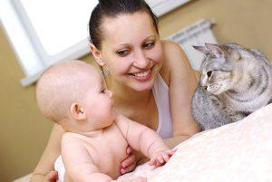 Eine Familie gründen; Wie man ein Haustier an ein neugeborenes Baby gewöhnt. 1