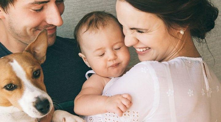 Wie Sie Ihr Haustier an ein neues Baby gewöhnen
