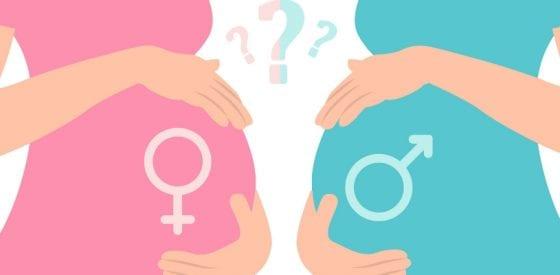 Neuentdeckte Gene bestimmen Geschlecht von Babys 1
