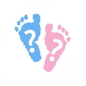 Neuentdeckte Gene bestimmen Geschlecht von Babys